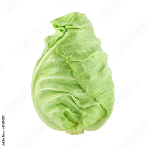 Leinwand Poster pointed cabbage isolated on white background