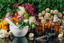 Bach Flower Remedies – Alternative Herbal Medicine