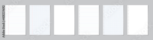 Obraz Paper page of notebook. School sheet with lines and grid. White sheets for notes. Notepad for mathematics and letter. Realistic blank notepaper with shadow isolated on gray background. Vector - fototapety do salonu