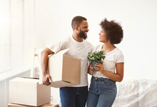 Cheerful Black Spouses Carrying Boxes Moving To New Apartment