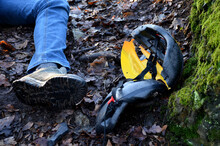A Young Man In Jeans Went Down Into The Woods And Smashed His Head In A Protective Helmet. The Helmet Lies Nearby. Lie Hand And Foot Without A Picture Of Life. Who Calls For Help