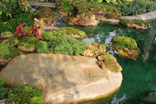 Large Flat Boulder Next To A Garden Pond And Moss Covered Rocks In A Landscaped Tropical Garden In Southeast Asia