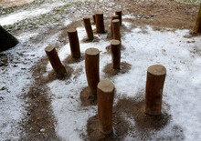 Forest Obstacle Course When Trying To Jump Over The Tops Of Stump Trunks Sunk Into The Soil. Obstacle Course For Children