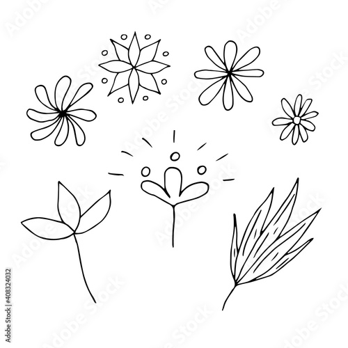 Fototapety, obrazy: Set of flowers and leaves, vector doodle illustration