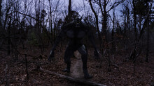 3d Illustration Of A Werewolf Dogman Bipedal Canine Cryptid In A Forest Looking Menacing