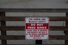 Sign At Beach Saying Do Not Feed Birds