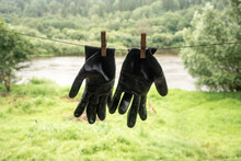 Two Black Gardening Gloves Hanging On clothesline
