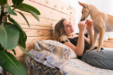 Smiling Woman Playing With Dog While Lying On Bed At Home