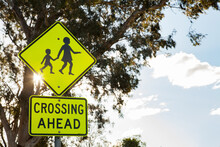 Crossing Ahead Sign In School Zone With Gum Trees And Sun Flare