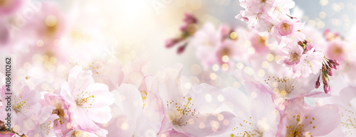 Photo Spring Nature Easter art background with blossom