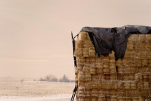 Stack Of Bales Of Hay On Farm Field In Winter