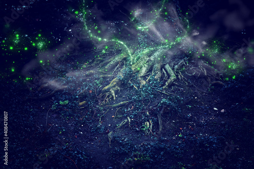 Slika na platnu Abstract and magical image of Firefly flying in the night forest