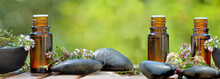 Bottles Of Essential Oil And Lavender Flowers  With Pebbles On Green Background