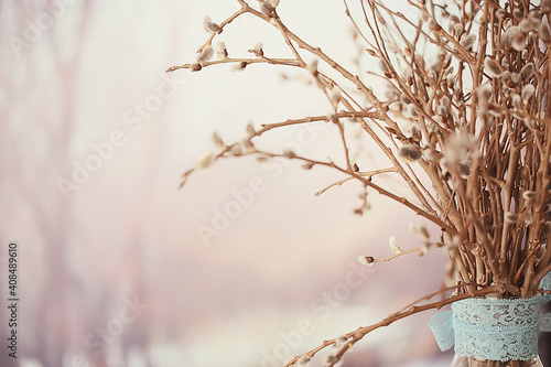 Fotografia pussy-willow willow / branches bloom, spring concept, Easter holiday, background
