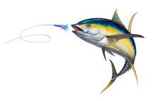 Yellow Tuna Black Fin Attacks Bait Sea Swim Squids. Realistic Illustration Of Yellow Tuna White Background Isolate.