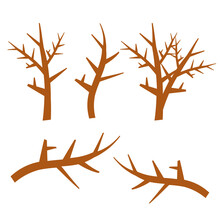 Hand Drawn Wood Twigs, Wooden Sticks, Tree Branches Vector Rustic Decoration Elements. Set Of Natural Wooden Stick, Illustration