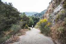 Jogger In The Angeles National Forest, California