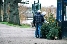 People Looking At Christmas Tree For Sale