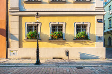 Potted Plants On Street By Building In City