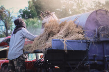Rear View Of Farmer Collecting Hay In Agriculture Vehicle
