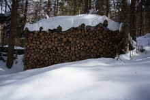 Stack Of Wood In Thriller Snow
