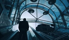 Rear View Of Silhouette Man On Escalators In Building