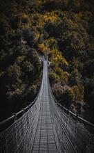 View Of Illuminated Bridge In Forest