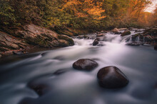 Scenic View Of River Cascades In The Forestforests Of The Great Smoky Mountains National Park