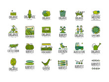 Organic Farm Icons For Your Design. Harvest Festival. Agriculture Collection. Organic Farming Eco Concept. Fresh Products, Locally Grown And Organic Food. Farmer's Market.