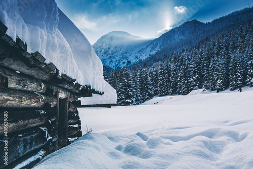 Dolina Jaworzynki - Tatry #408639688