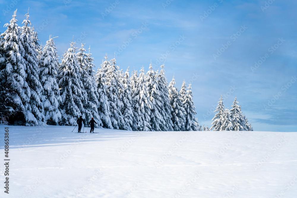 Fototapeta Cross country skiing track on sunny day
