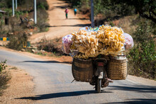 Motorcycle Transporting Goods During Sunny Day, Loikaw, Myanmar