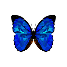 Low Poly Butterfly Isolated On White Background