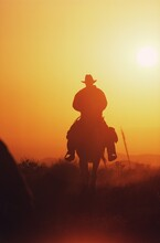 Silhouette Of A Cowboy Riding Horse At Sunset, Texas, USA