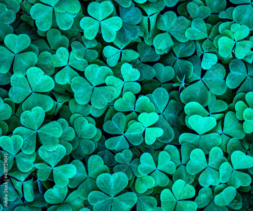 Fényképezés Background with green clover leaves for Saint Patrick's day