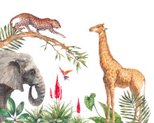 Safari Wildlife Wallpaper. Illustration With Elephant, Leopard And Giraffe. Watercolor Animal And Jungle Flora On White Background.