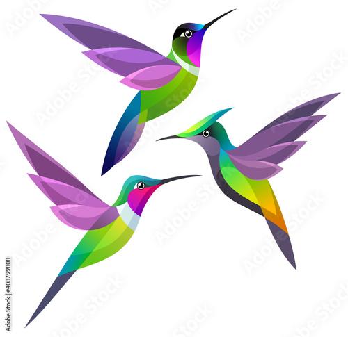 Valokuva Stylized Hummingbirds in flight