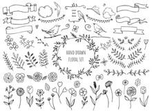 Hand Drawn Floral Frame Ornaments Set, Vector Illustration For Greeting Card, Nature Images
