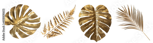 Fotografie, Obraz Tropical leaves in gold color on white space background