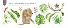 Tropical Leaves, Flowers And Big Cat Cheetah Watercolor Elements Set