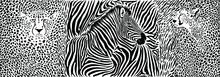 Animals Background - Pattern With Zebra And Cheetahs Motif