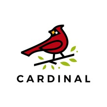 Cardinal Leaf Line Color Fill Logo Vector Icon Illustration