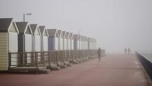 Misty Promenade Walk