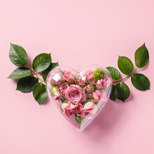 Valentines Layout Made With Transparent Plastic Heart Filled With Rose Buds With Leaves Wings On Pastel Pink Background. Minimal Valentine's Day, Wedding, Dating, Spring Or Love Concept. Flat Lay.