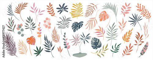 Obraz set of hand drawn modern tropical exotic leaves and branches illustration isolated on white background - fototapety do salonu