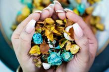 Womans Hands Holding Flower Petals. Potpourri. Spa. Tranquil