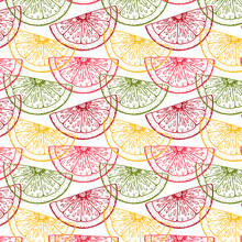 Colorful Hand Drawn Citrus Seamless Pattern. Vector Illustration In Sketch Style