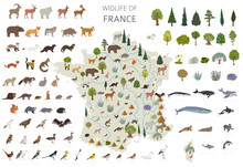 Flat Design Of France Wildlife. Animals, Birds And Plants Constructor Elements Isolated On White Set. Build Your Own Geography Infographics Collection.