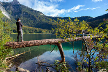 A Caucasian Man Standing On A Fallen Tree Over Lake Alpsee In Germany