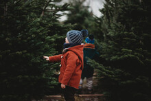 Boy In Red Wool Coat Touching A Tree During Christmas Season